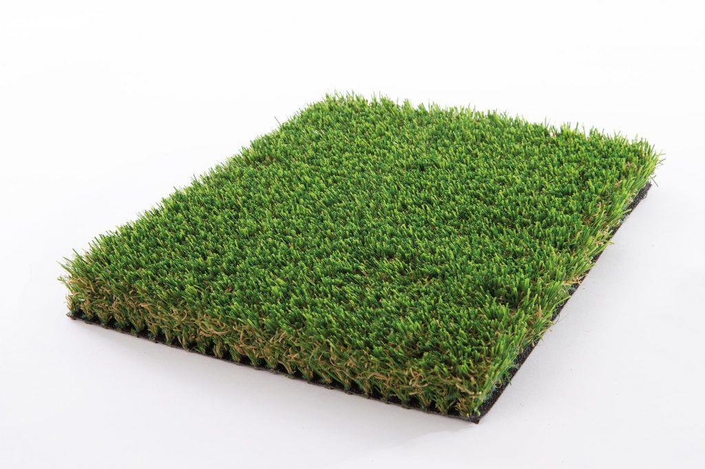 Grassland Plus